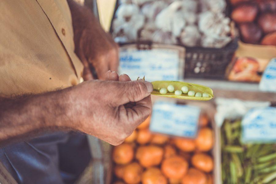 ISPRA: lo spreco alimentare si combatte con filiere corte, solidali e bio