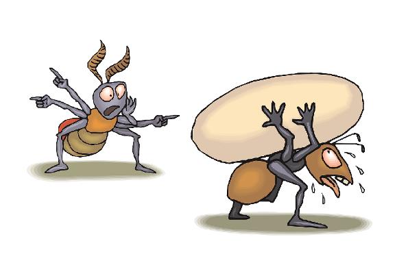 La cicala e la formica: una versione del terzo millennio